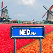 NED FM